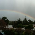 Rainbow at the Office